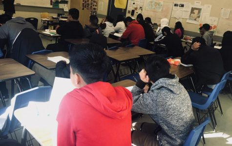 Are ELD Students Being Set Up for Success or Failure?