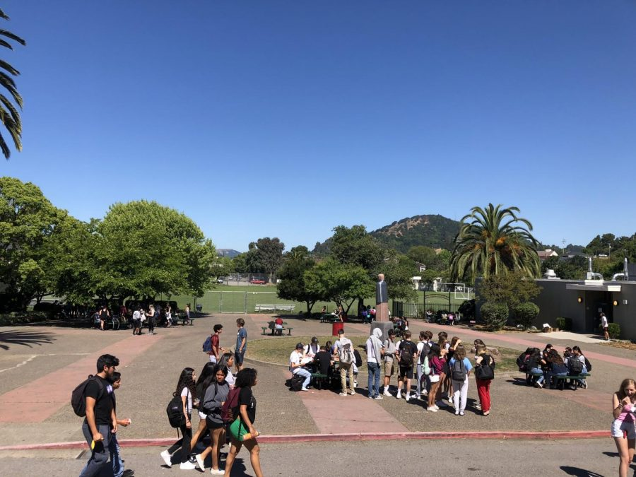 Why We Sit at Different Tables: Self-Segregation at San Rafael High School